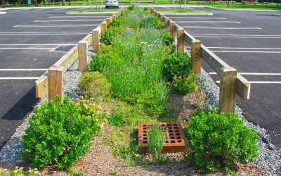 Optimizing Stormwater Controls for Nutrient Removal